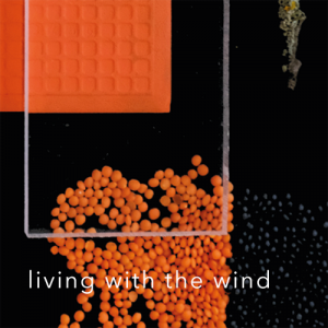 living with the wind